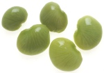 Lima beans--who really likes these things?